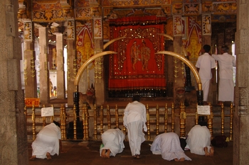 Prayers at Tooth Temple, Kandy